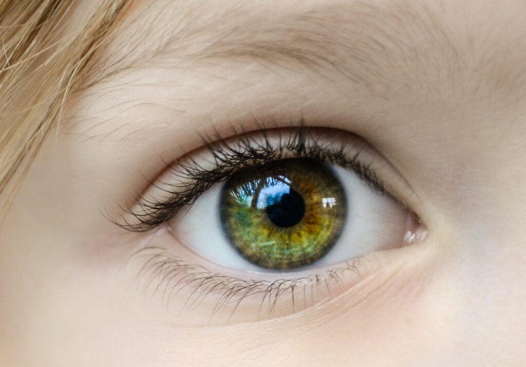 multivitamin promote eye health