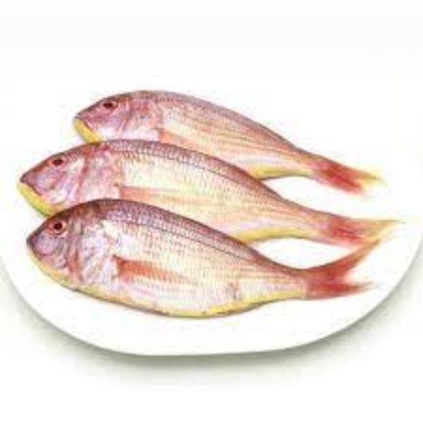Pink parse fish